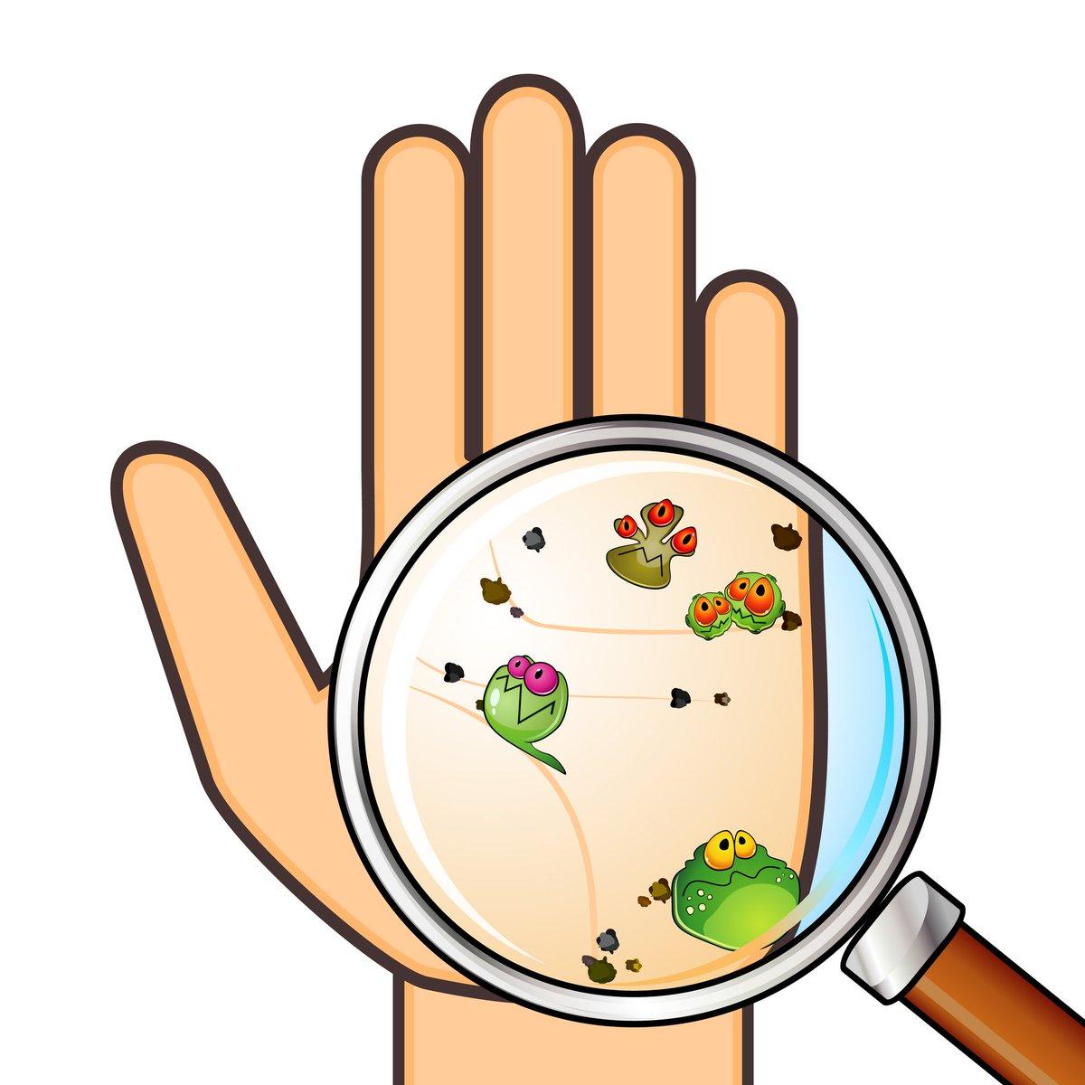 Бактерии на руках