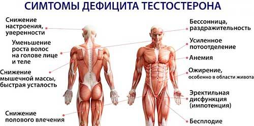 Тестостерон симптомы дефицита
