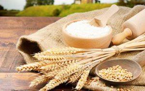Мука из пшеницы