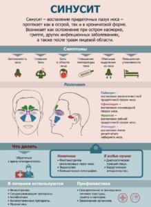 Общая информация о синусите