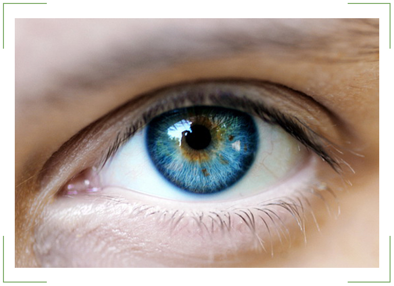 Болезни-глаз