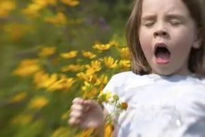 Как защитить от аллергенов свой дом