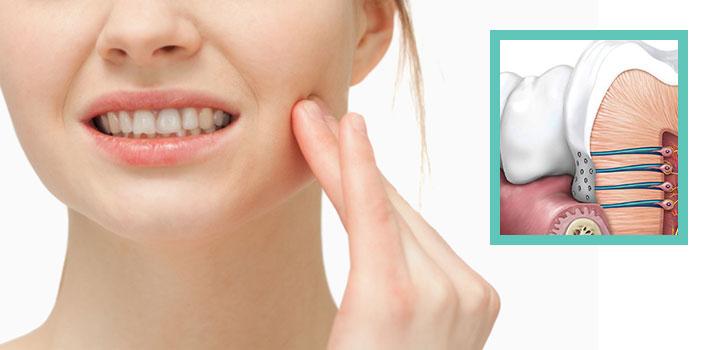 Прозрачные зубы