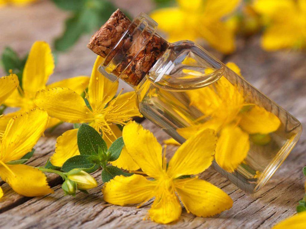 Польза масла зверобоя для кожи лица, 4 рецепта