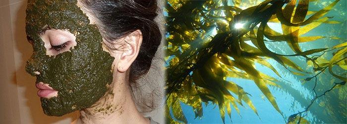 Маски из морской капусты
