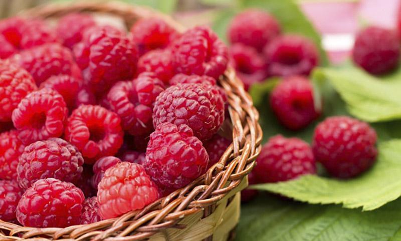 Лайфхаки с садовыми ягодами для идеальной кожи лица