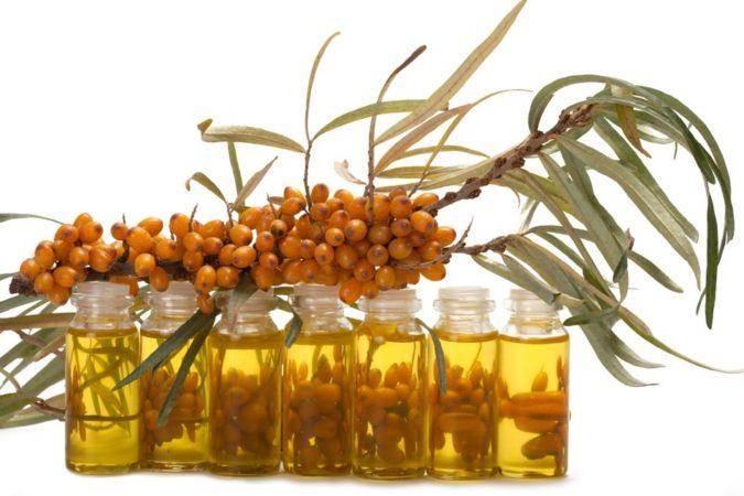 Поможет ли масло облепихи при стоматите?