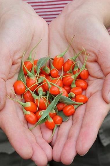 Маски с ягодами годжи для лица