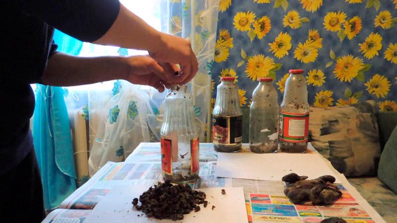 Эффективность бобровой струи при лечении псориаза