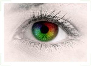 Тест на цветовосприятие (дальтонизм) по таблицам Рабкина